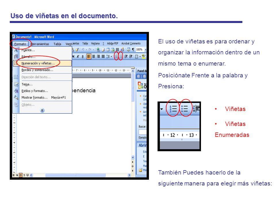 Uso de viñetas en el documento.