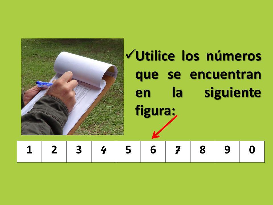 Utilice los números que se encuentran en la siguiente figura: