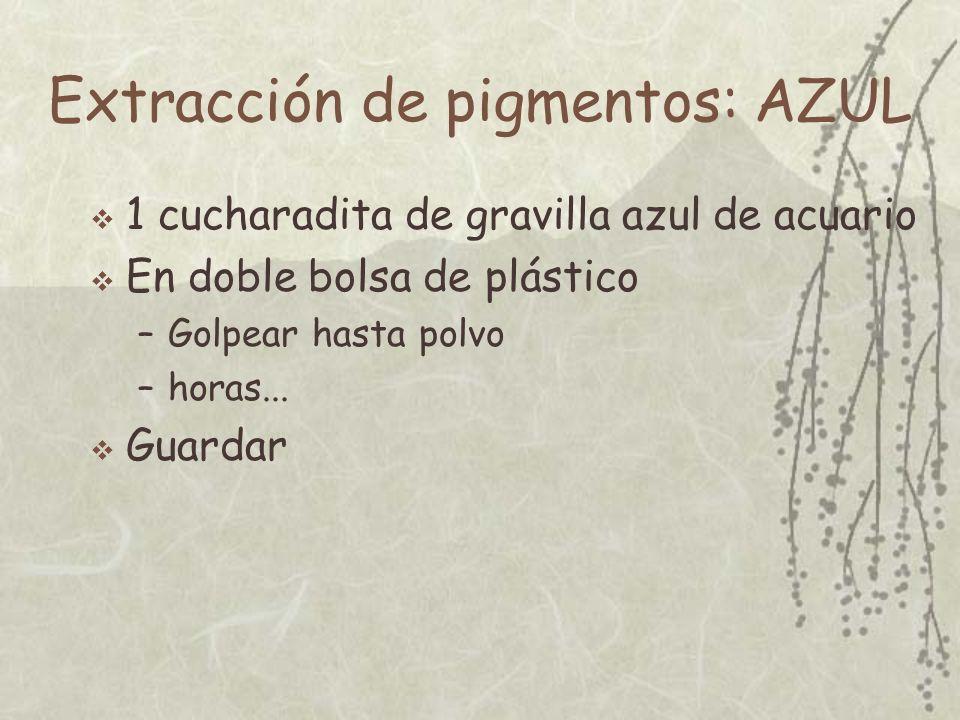 Extracción de pigmentos: AZUL