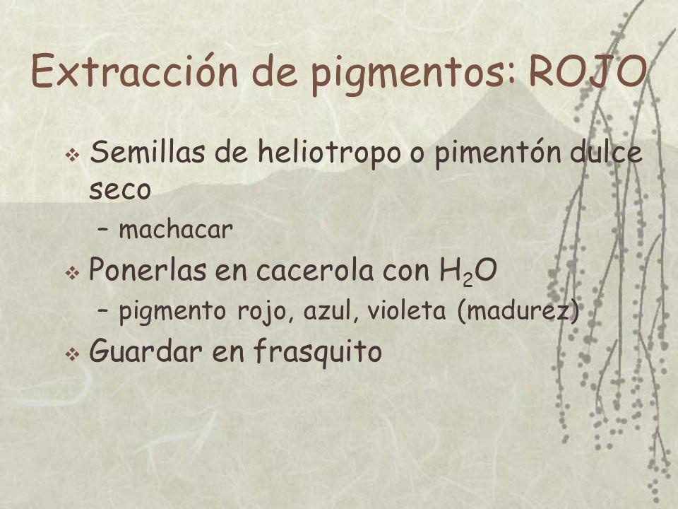 Extracción de pigmentos: ROJO