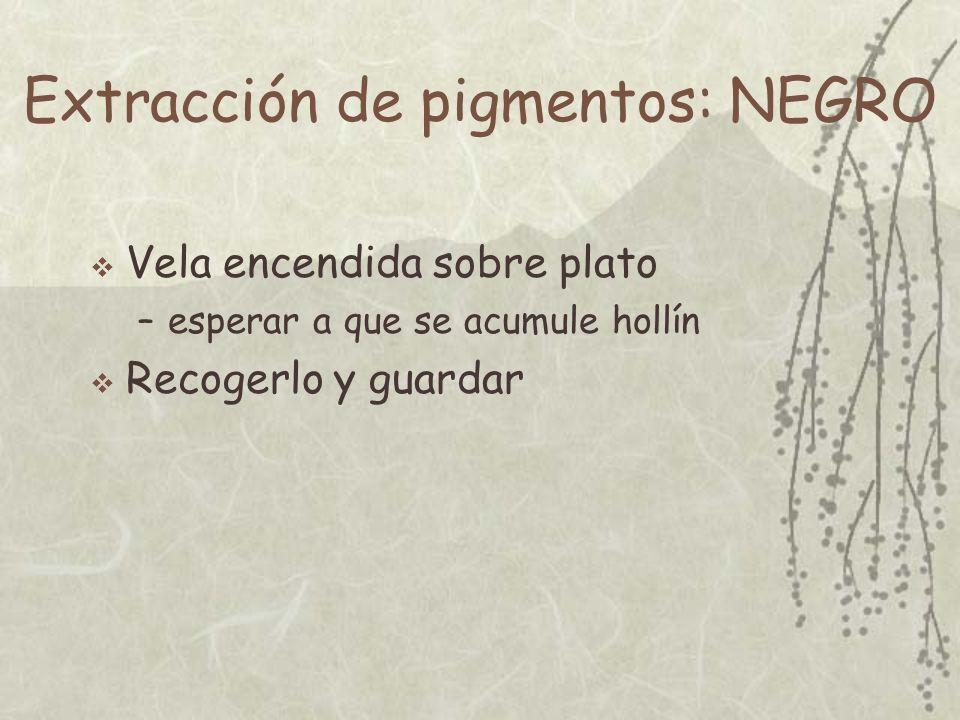 Extracción de pigmentos: NEGRO