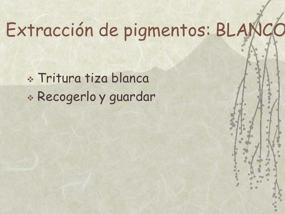 Extracción de pigmentos: BLANCO