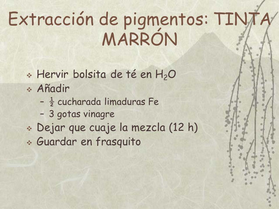 Extracción de pigmentos: TINTA MARRÓN
