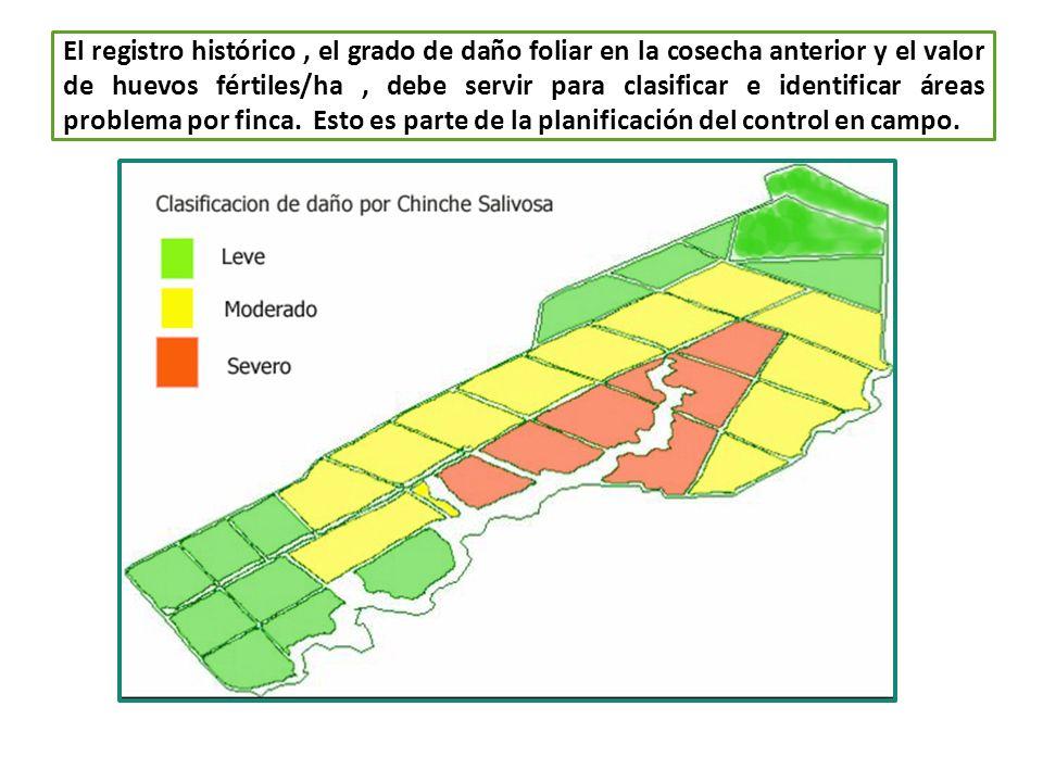 El registro histórico , el grado de daño foliar en la cosecha anterior y el valor de huevos fértiles/ha , debe servir para clasificar e identificar áreas problema por finca.