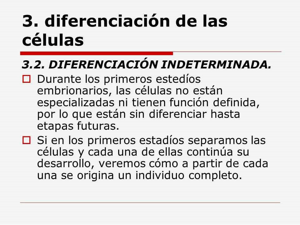 3. diferenciación de las células