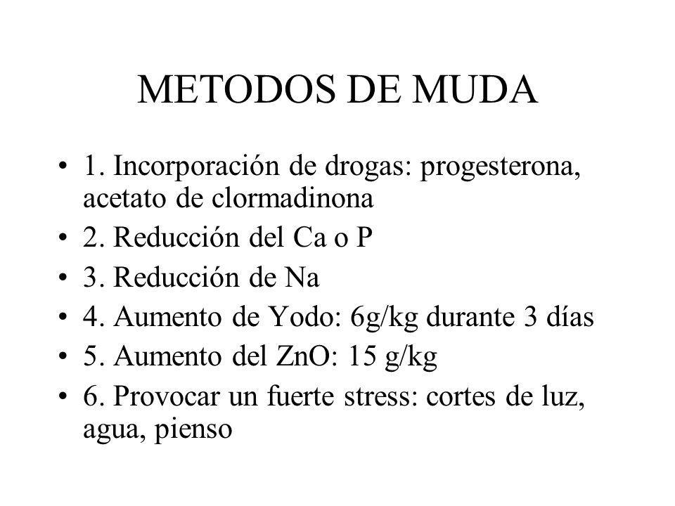 METODOS DE MUDA 1. Incorporación de drogas: progesterona, acetato de clormadinona. 2. Reducción del Ca o P.