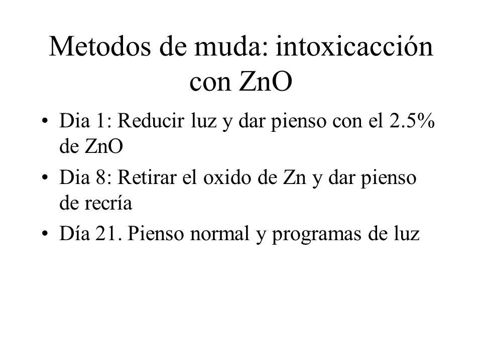 Metodos de muda: intoxicacción con ZnO