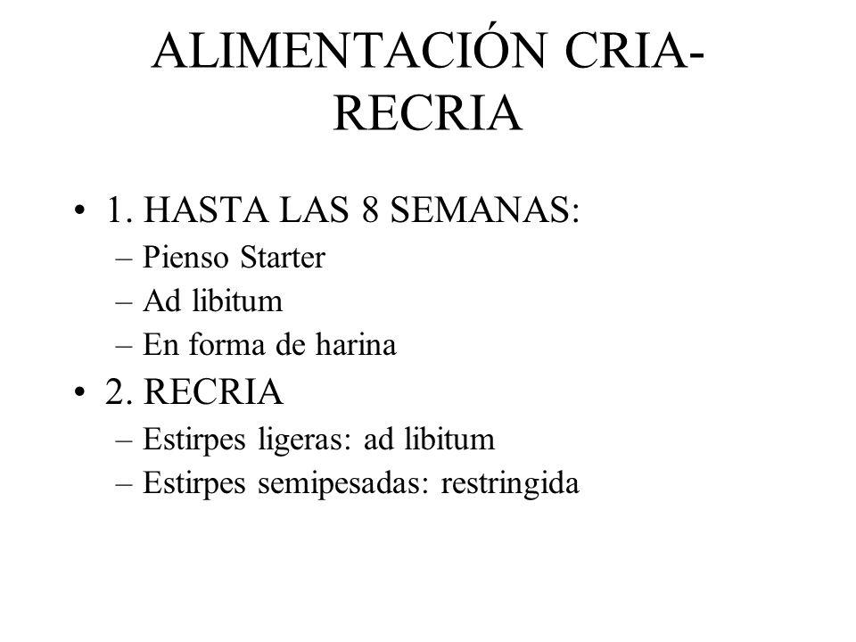 ALIMENTACIÓN CRIA-RECRIA