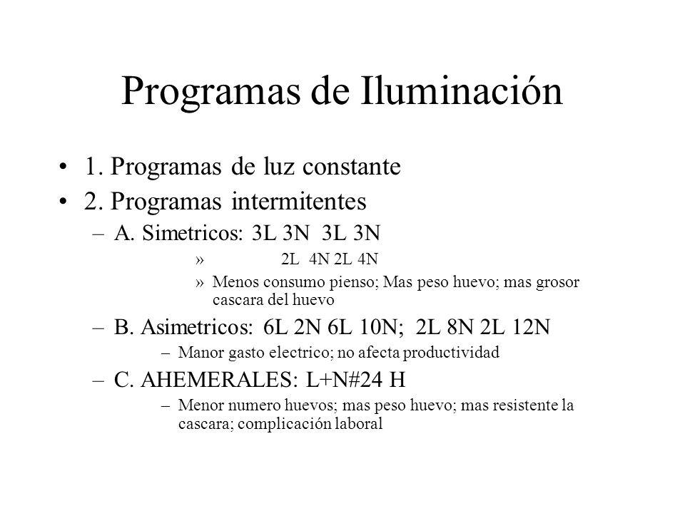 Programas de Iluminación
