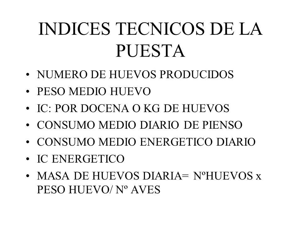 INDICES TECNICOS DE LA PUESTA