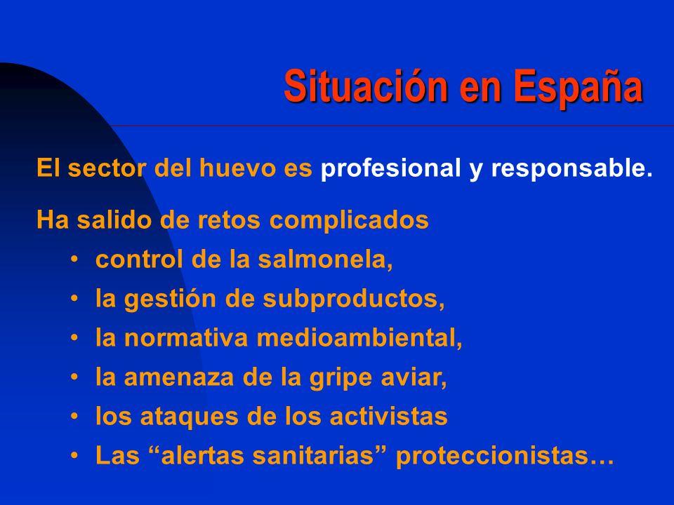 Situación en España El sector del huevo es profesional y responsable.