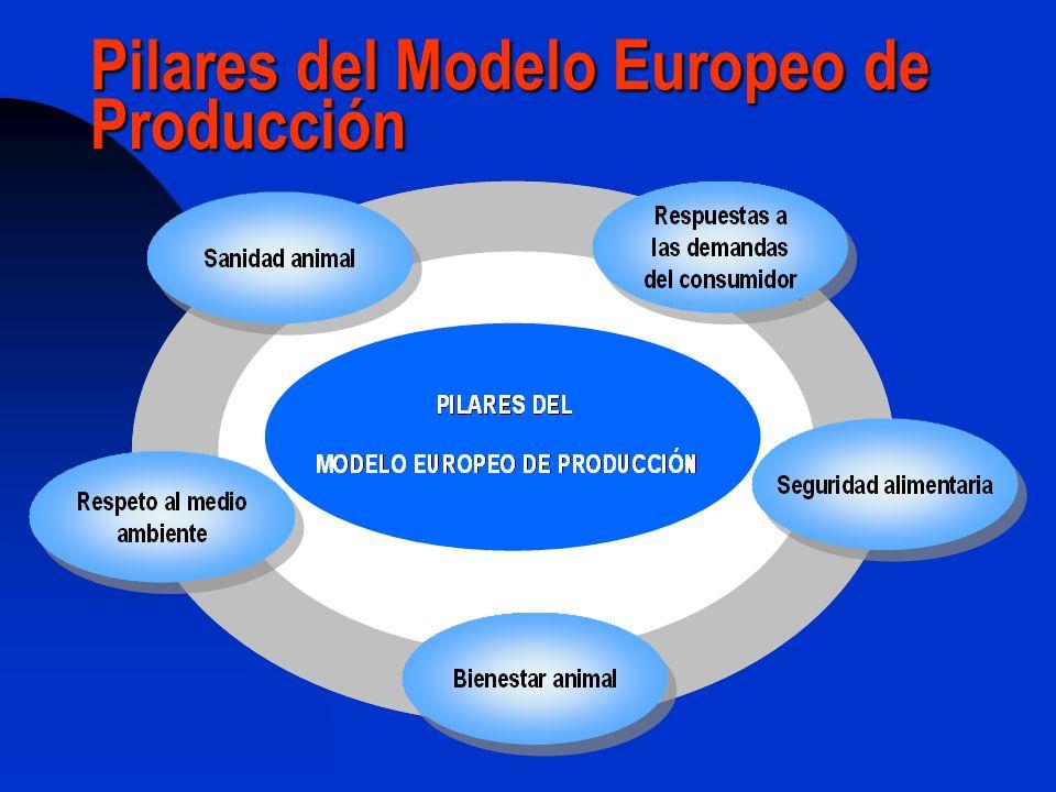 Pilares del Modelo Europeo de Producción