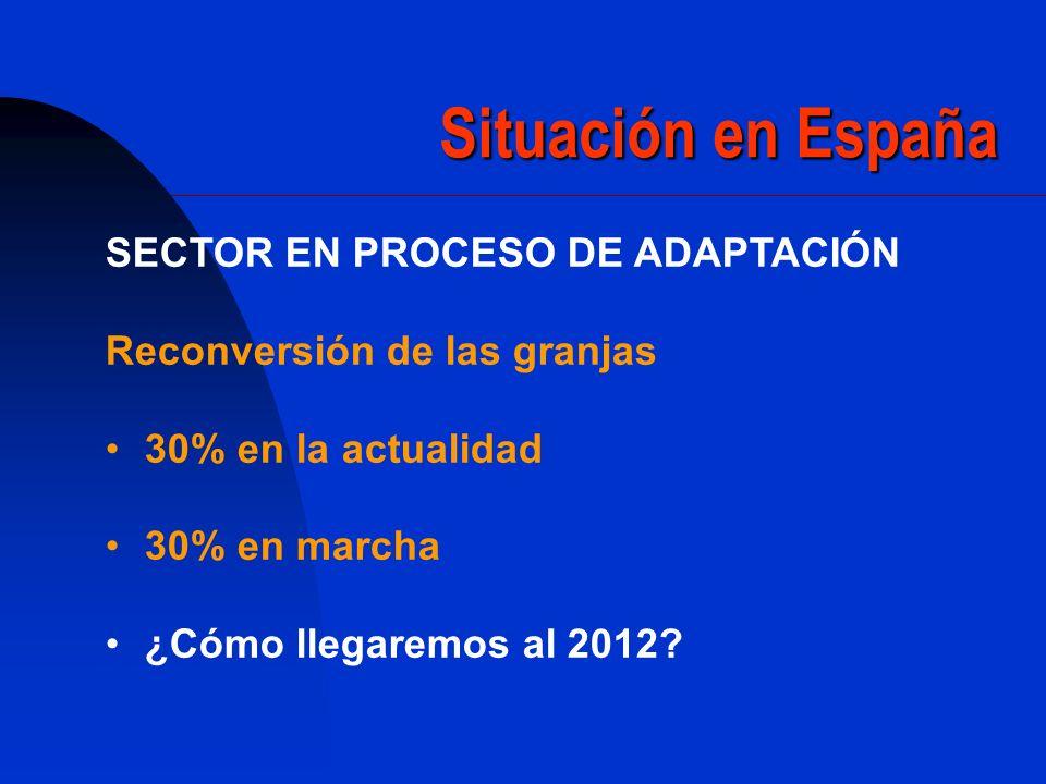 Situación en España SECTOR EN PROCESO DE ADAPTACIÓN