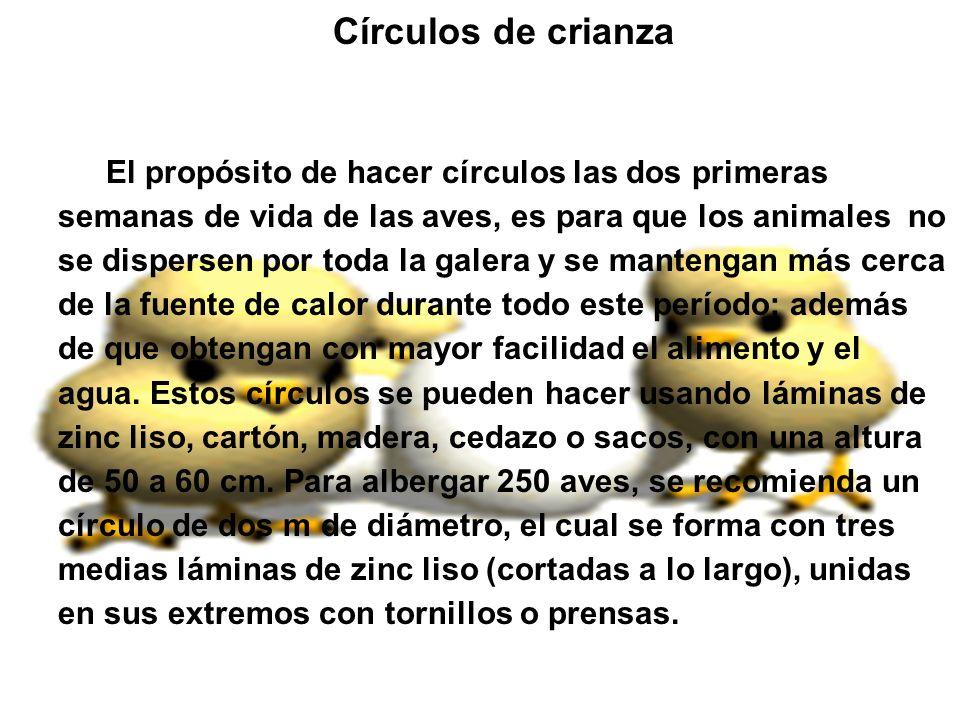 CIRCULOS DE CRIANZA Círculos de crianza
