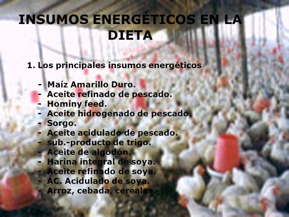 INSUMOS ENERGÉTICOS EN LA DIETA