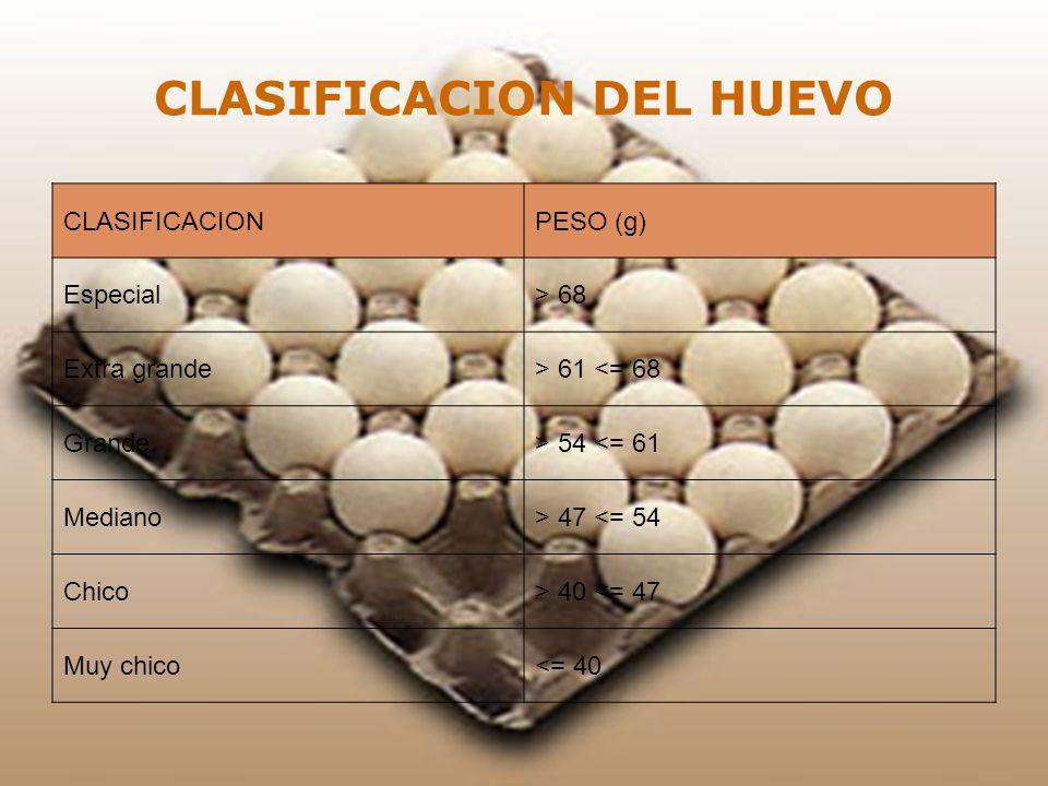 CLASIFICACION DEL HUEVO