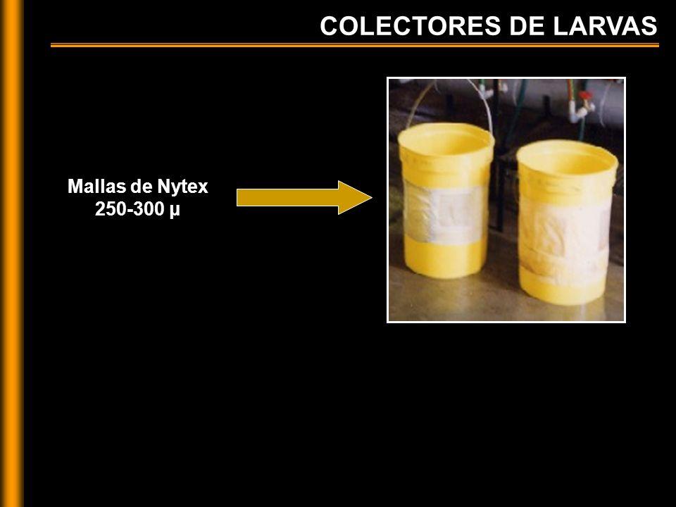 COLECTORES DE LARVAS Mallas de Nytex 250-300 μ