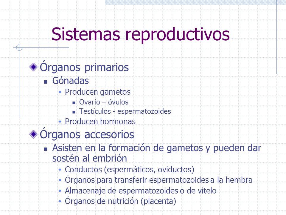 Sistemas reproductivos