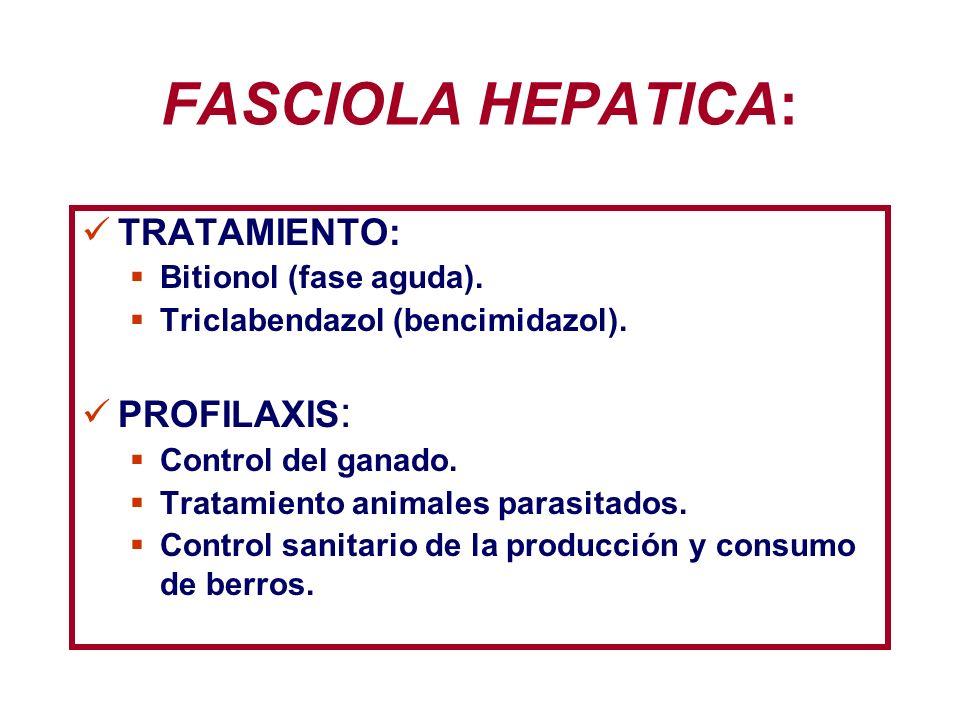 FASCIOLA HEPATICA: TRATAMIENTO: PROFILAXIS: Bitionol (fase aguda).