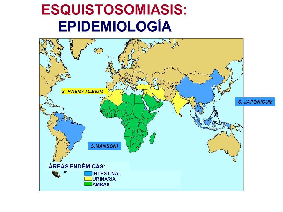 ESQUISTOSOMIASIS: EPIDEMIOLOGÍA