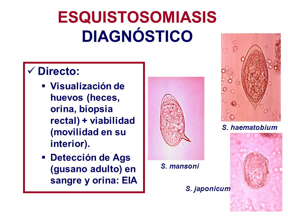 ESQUISTOSOMIASIS DIAGNÓSTICO