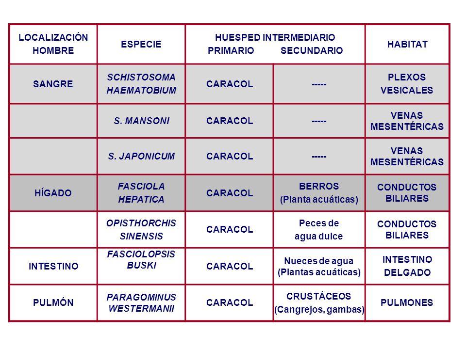 HUESPED INTERMEDIARIO PRIMARIO SECUNDARIO HABITAT