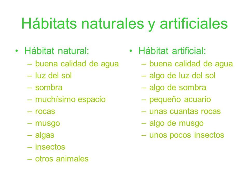 Hábitats naturales y artificiales