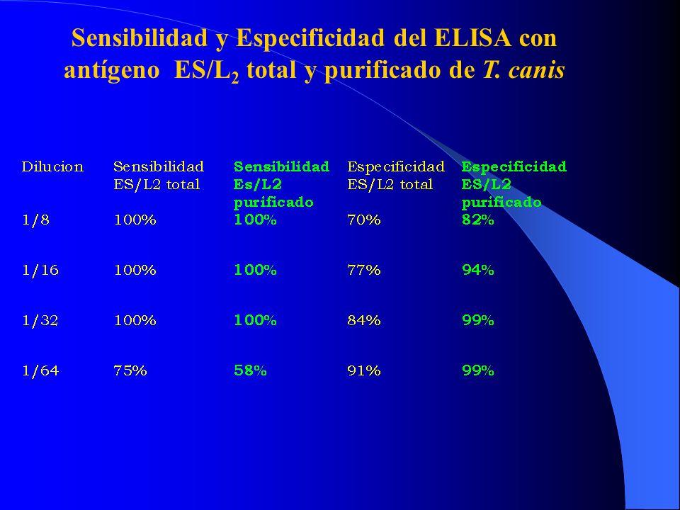 Sensibilidad y Especificidad del ELISA con antígeno ES/L2 total y purificado de T. canis