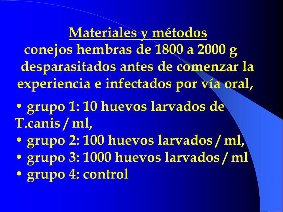 Materiales y métodos conejos hembras de 1800 a 2000 g. desparasitados antes de comenzar la experiencia e infectados por vía oral,