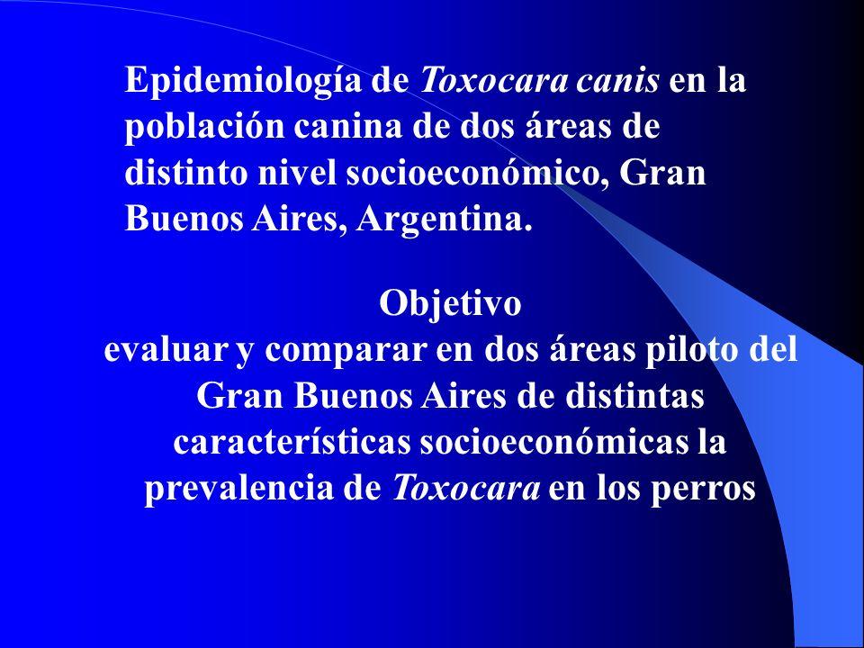 Epidemiología de Toxocara canis en la población canina de dos áreas de distinto nivel socioeconómico, Gran Buenos Aires, Argentina.