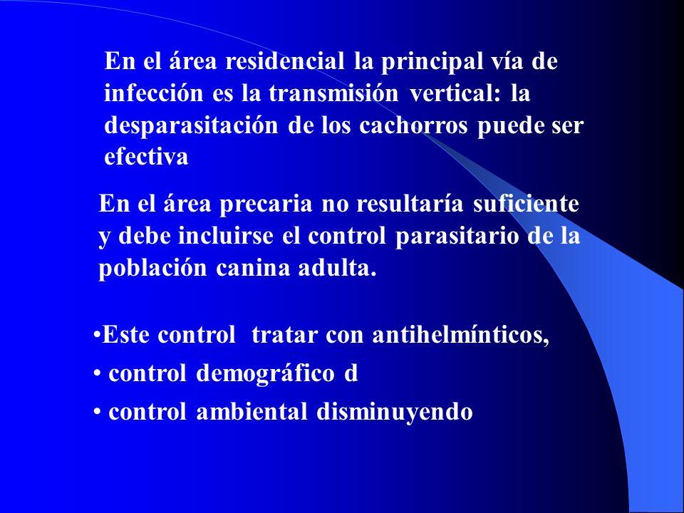 En el área residencial la principal vía de infección es la transmisión vertical: la desparasitación de los cachorros puede ser efectiva