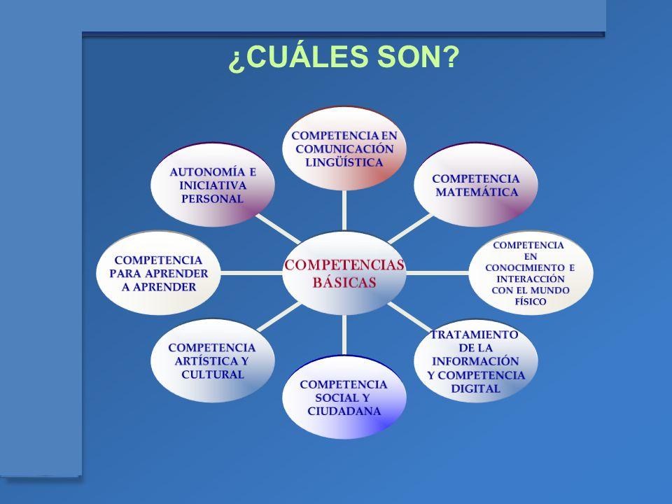 ¿CUÁLES SON 5