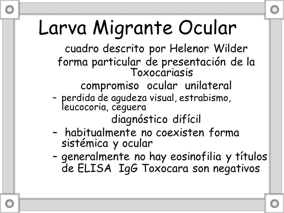 Larva Migrante Ocular cuadro descrito por Helenor Wilder