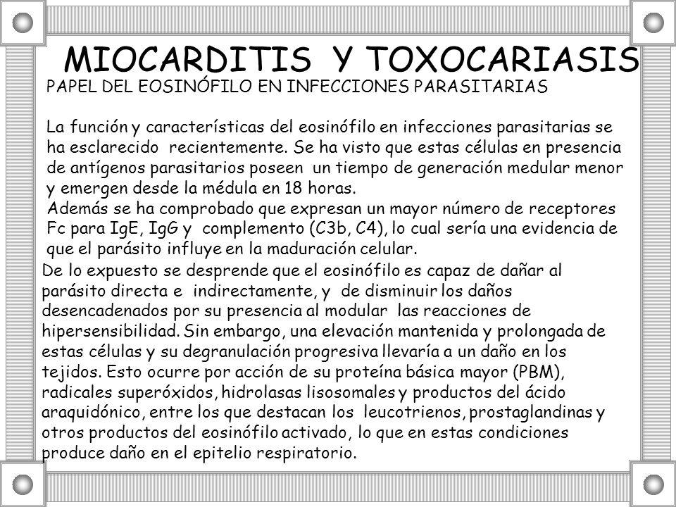 MIOCARDITIS Y TOXOCARIASIS