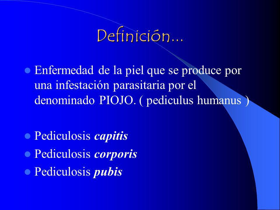 Definición... Enfermedad de la piel que se produce por una infestación parasitaria por el denominado PIOJO. ( pediculus humanus )