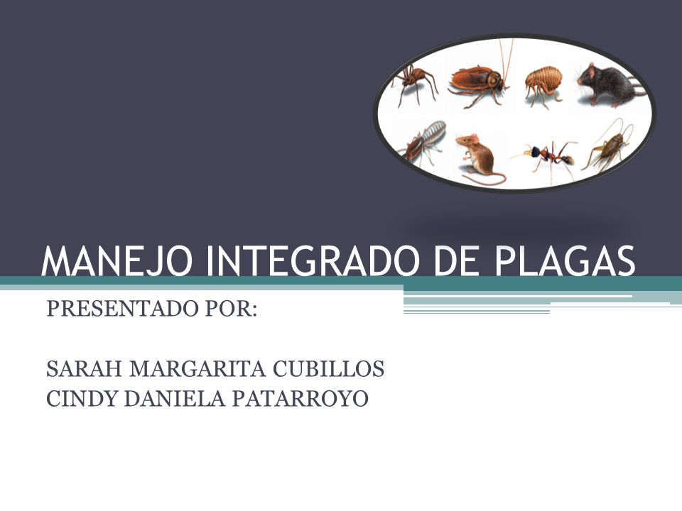 MANEJO INTEGRADO DE PLAGAS