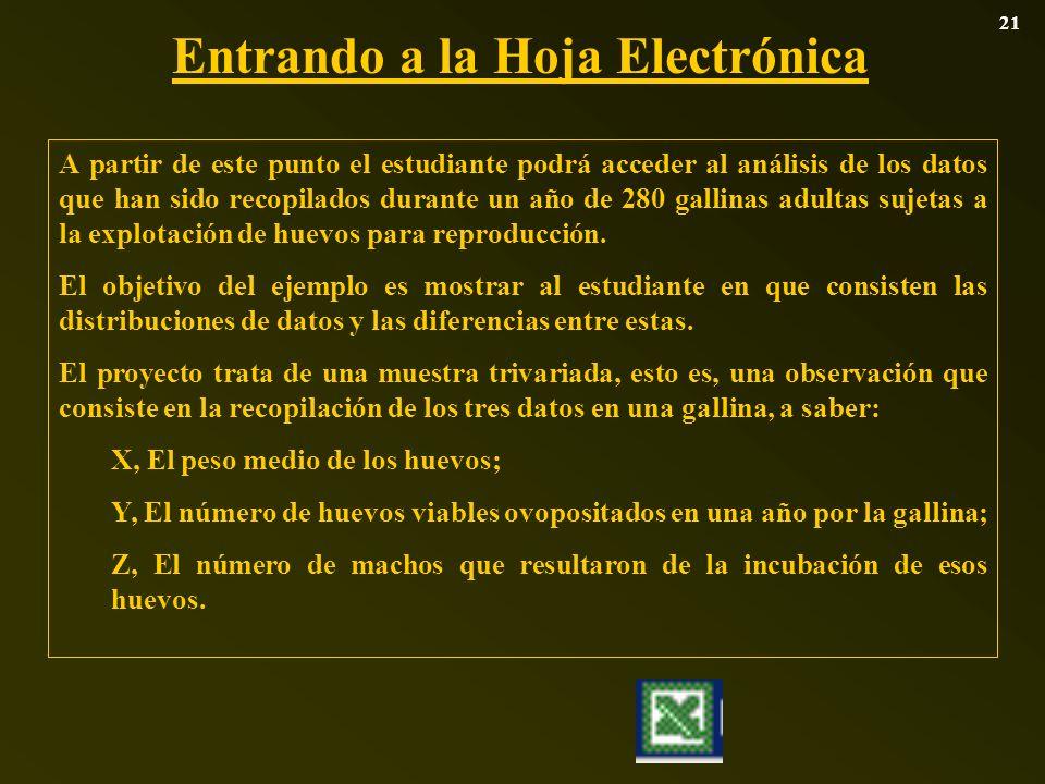 Entrando a la Hoja Electrónica