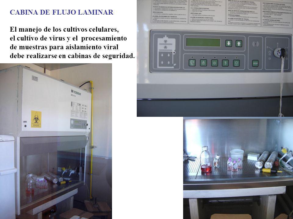 CABINA DE FLUJO LAMINAR