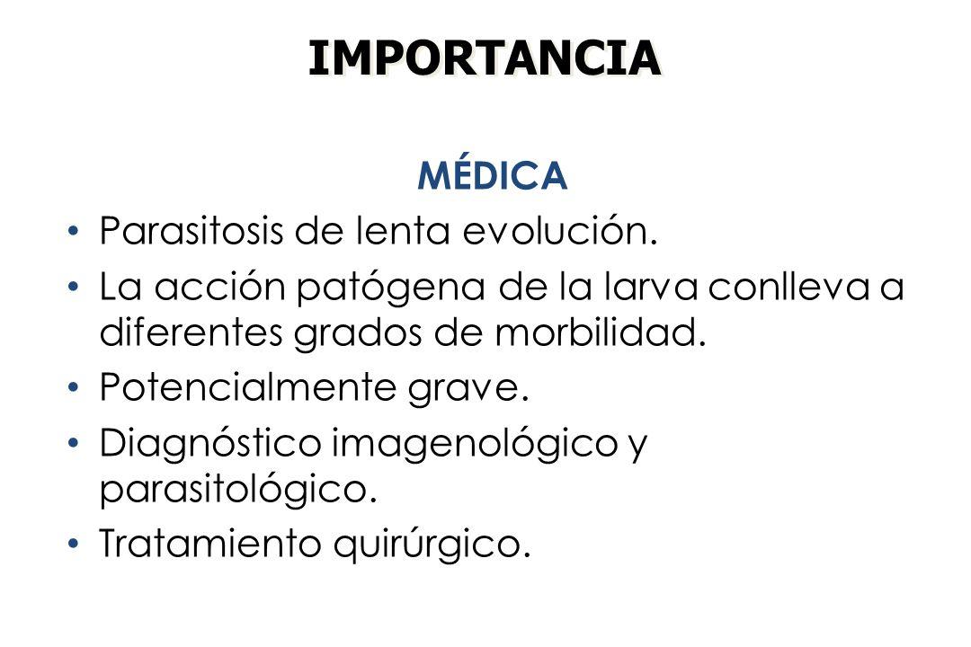 IMPORTANCIA MÉDICA Parasitosis de lenta evolución.