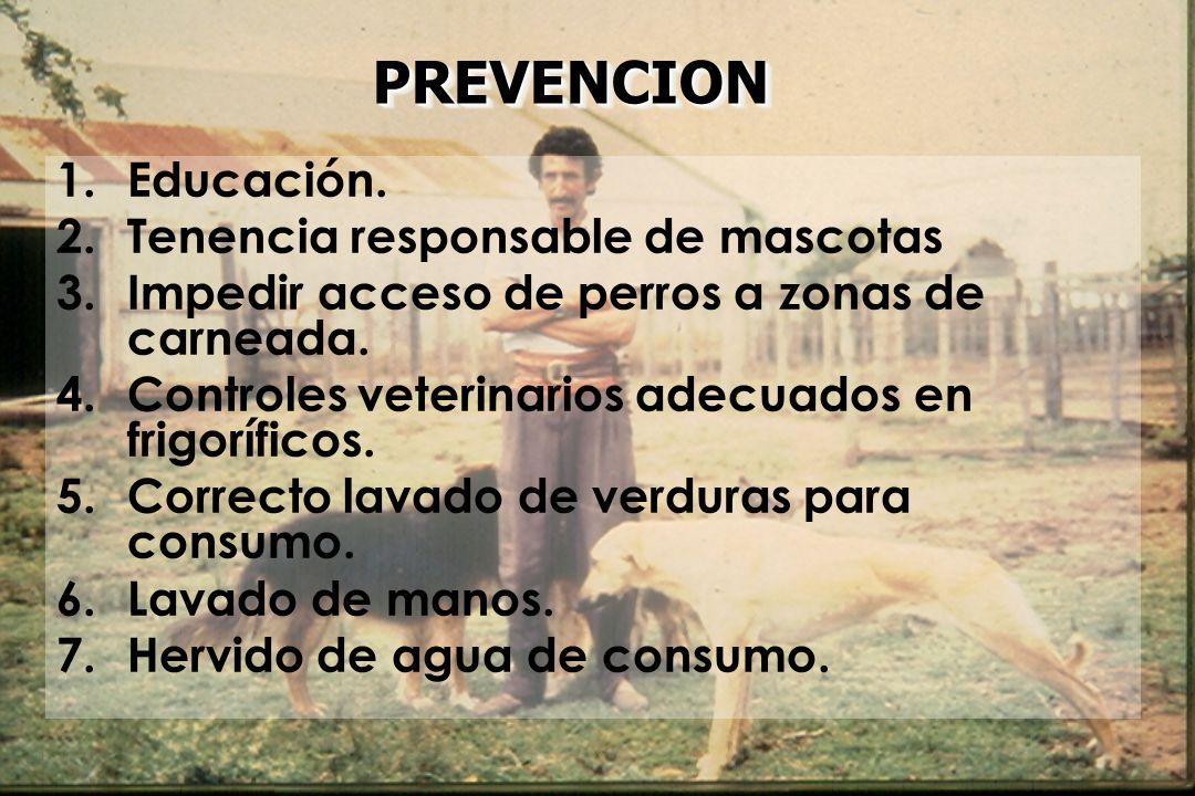 PREVENCION Educación. Tenencia responsable de mascotas