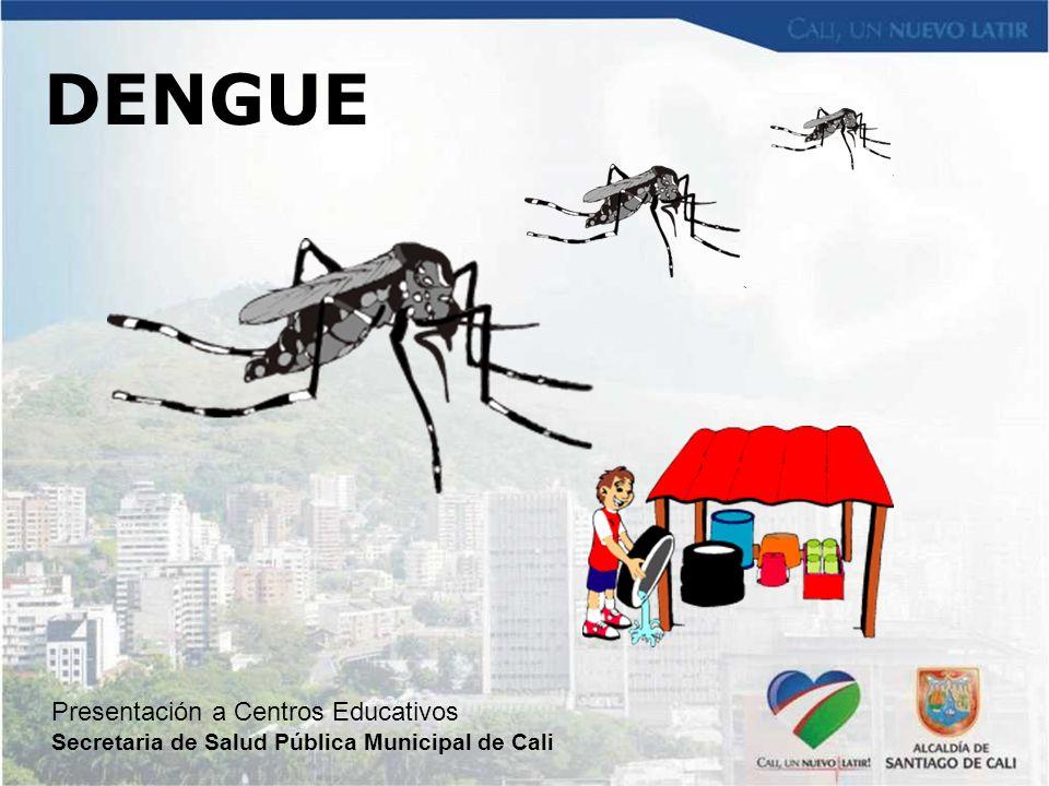 DENGUE Presentación a Centros Educativos Secretaria de Salud Pública Municipal de Cali