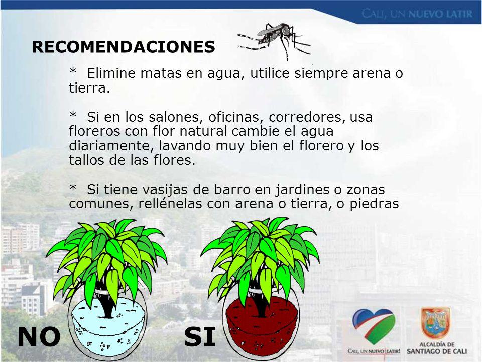 RECOMENDACIONES * Elimine matas en agua, utilice siempre arena o tierra.