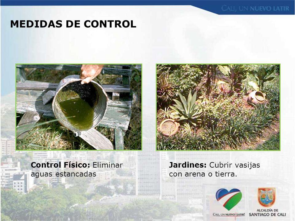 MEDIDAS DE CONTROL Control Físico: Eliminar aguas estancadas