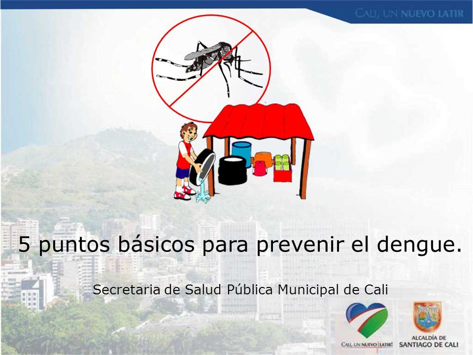 5 puntos básicos para prevenir el dengue