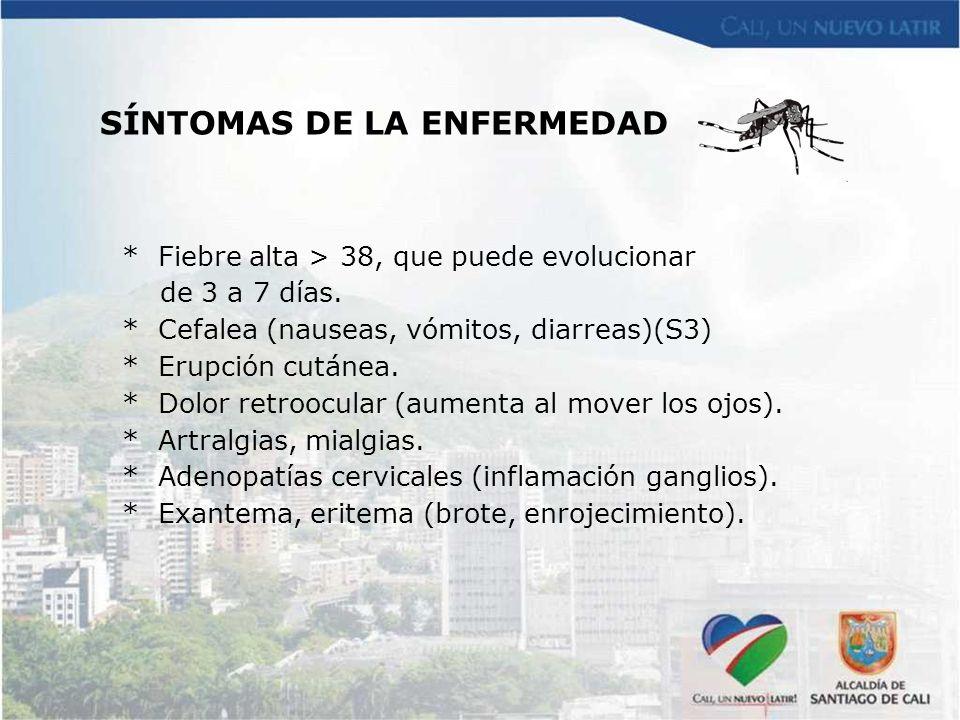 SÍNTOMAS DE LA ENFERMEDAD