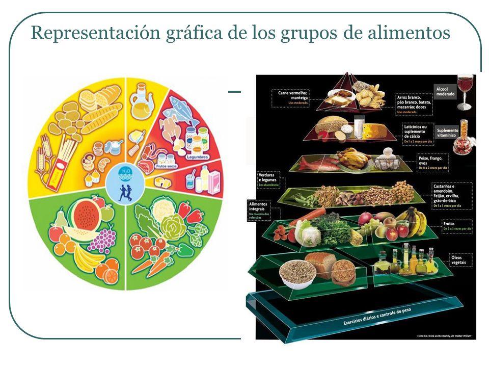 Representación gráfica de los grupos de alimentos