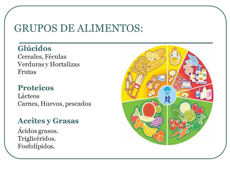 GRUPOS DE ALIMENTOS: Glúcidos Proteicos Aceites y Grasas