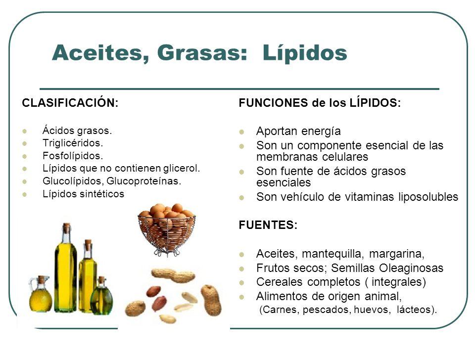 Aceites, Grasas: Lípidos