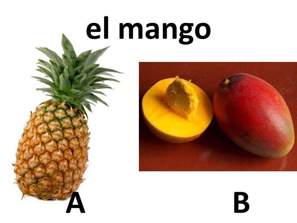 el mango A B 29