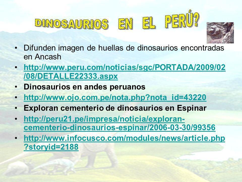 DINOSAURIOS EN EL PERÚ Difunden imagen de huellas de dinosaurios encontradas en Ancash.